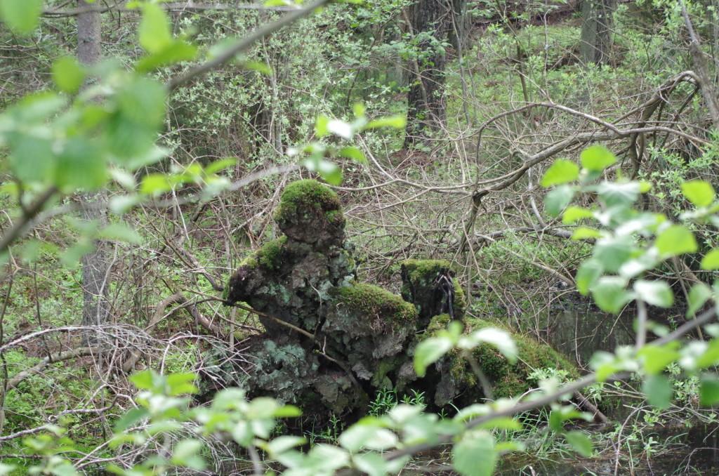 Ghost Swedish Woods 2